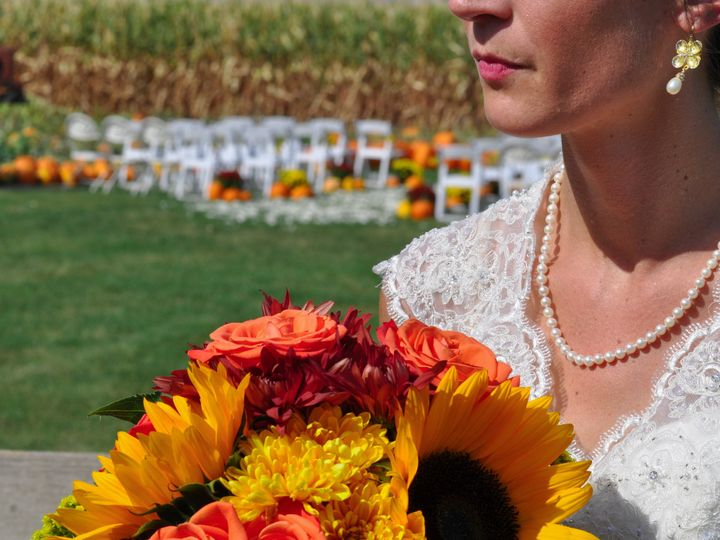 Tmx 1509116379418 Eva  Peter 76 Davenport wedding videography