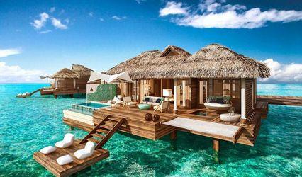 Passport to Paradise 1