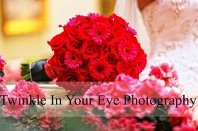Twinkle In Your Eye Photography