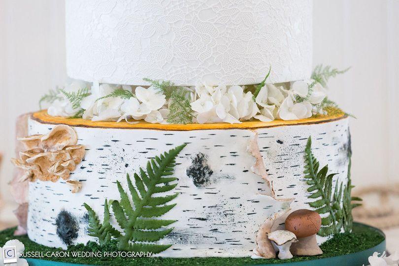 Birch Bark with edible ferns,mushrooms
