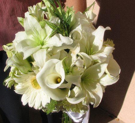 Tmx 1384637882430 22  Santa Barbara, California wedding planner