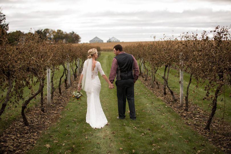 The vineyard in October