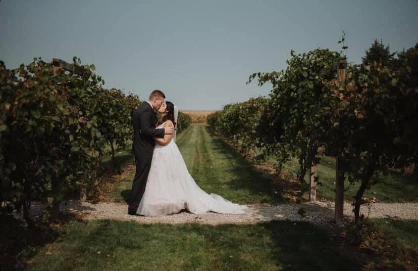 schade vineyard 51 2002601 160771955472526