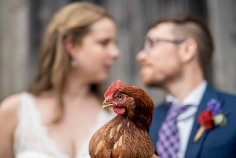Couple's portrait with hen