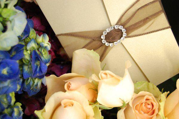 Tmx 1295993354746 Audrey Bradenton wedding invitation