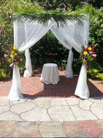 Tropicals in Sunken Gardens