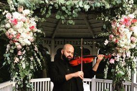 James Teal Violin