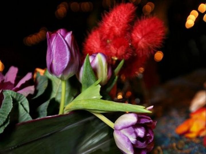 Tmx 1318469093823 0581 Austin, TX wedding planner