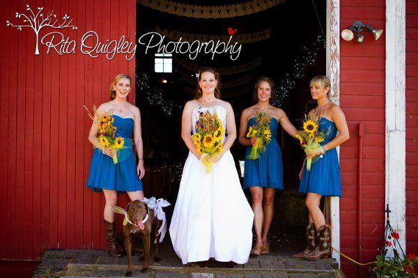 Tmx 1328730607519 Reception153 Missoula, MT wedding photography