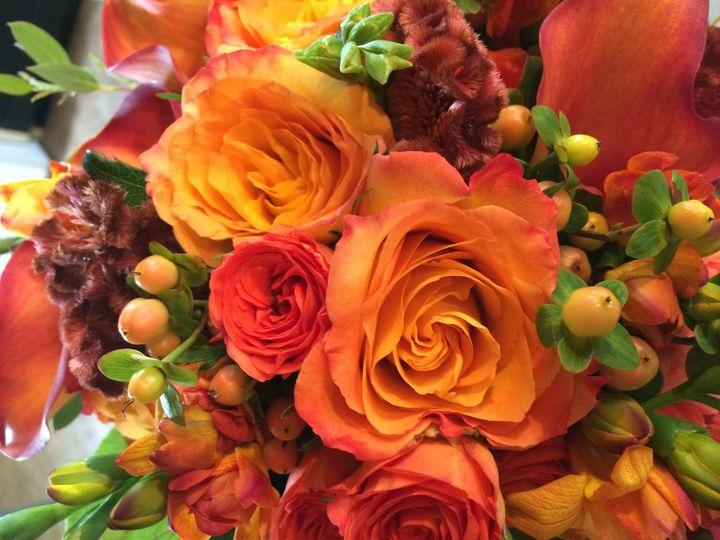 Tmx 1479099592947 Img1533 Little Suamico, Wisconsin wedding florist