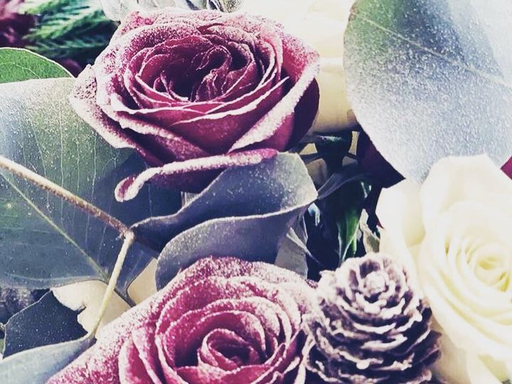 Tmx Img 50651 51 950801 158105094828193 Little Suamico, Wisconsin wedding florist
