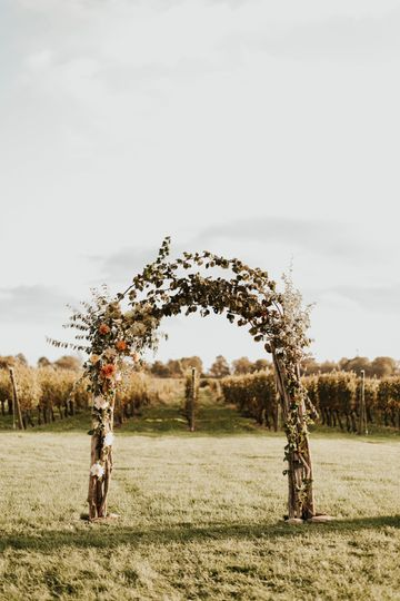 The vines on the arch