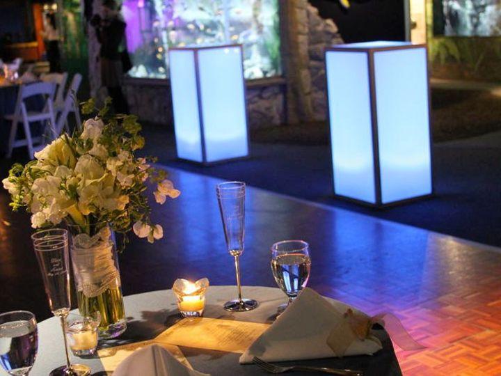 Tmx 1342033049216 Weddignaquarium042 Stonington, Connecticut wedding florist