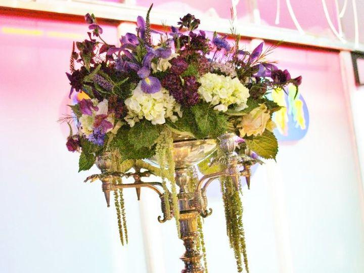Tmx 1342033073035 Weddignaquarium059 Stonington, Connecticut wedding florist