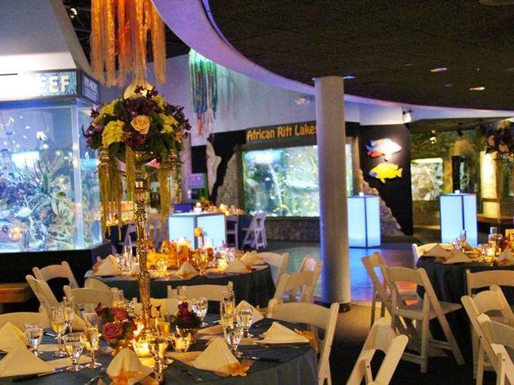 Tmx 1342033090795 Weddignaquarium080 Stonington, Connecticut wedding florist