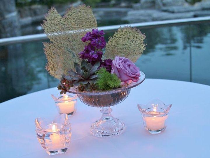 Tmx 1342033100555 Weddignaquarium099 Stonington, Connecticut wedding florist