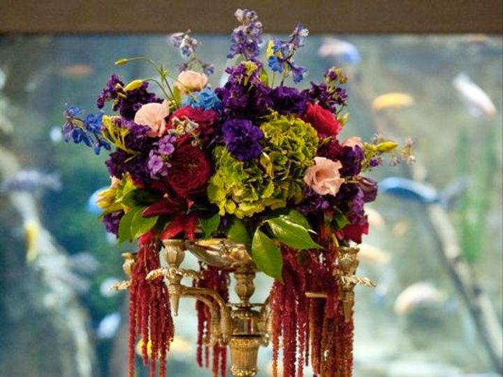 Tmx 1342033177378 King150 Stonington, Connecticut wedding florist