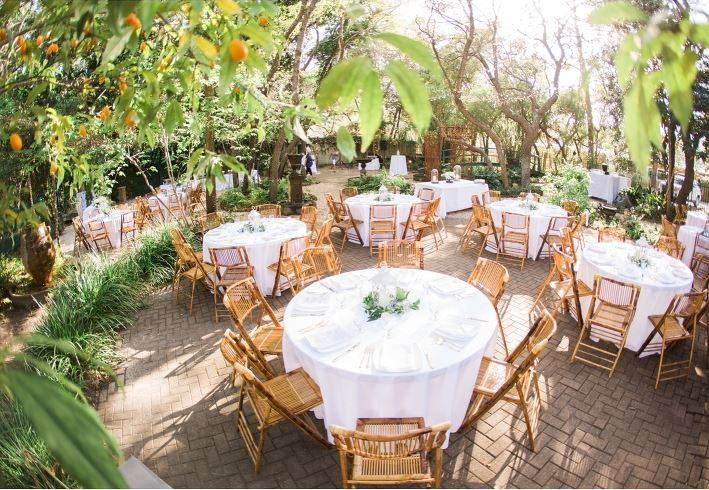 monet monet bamboo chairs reception 51 938801 v1