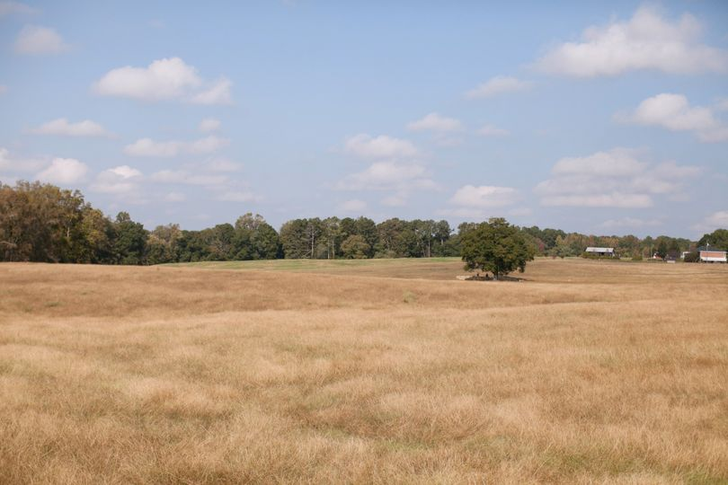 The hay field and one hundred plus year old oak tree at the Red Tin Barn.