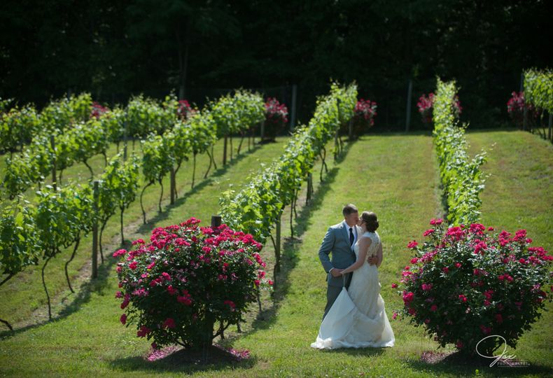 Kiss at the vineyard