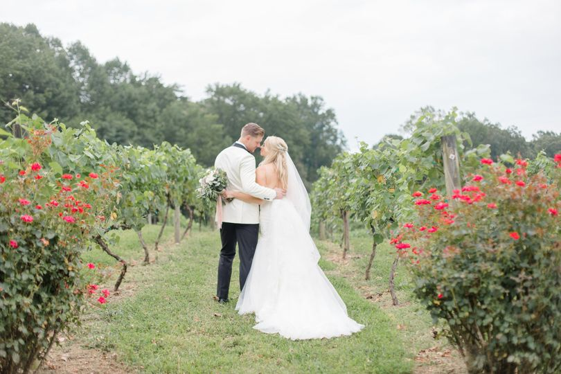 Newlyweds in the Vines