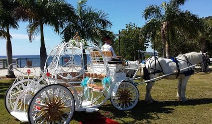 charlenes classic carriages