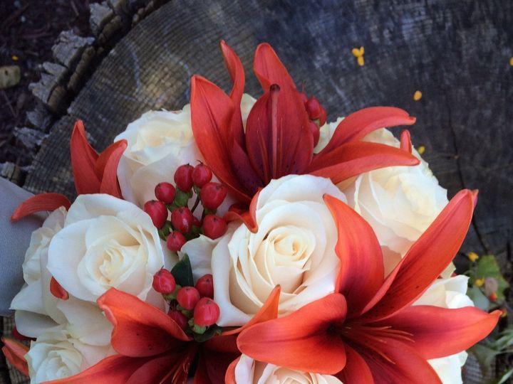 Tmx 1450055919971 Img0357 New Hope, Pennsylvania wedding florist