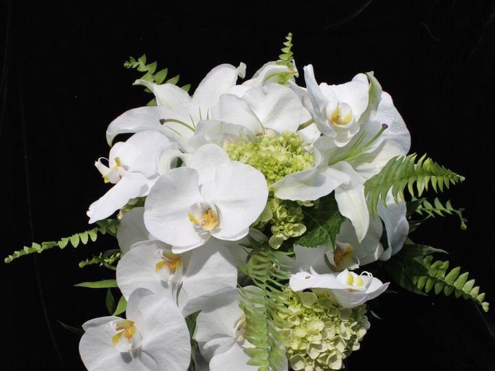 Tmx 1450056185156 Img5446 New Hope, Pennsylvania wedding florist