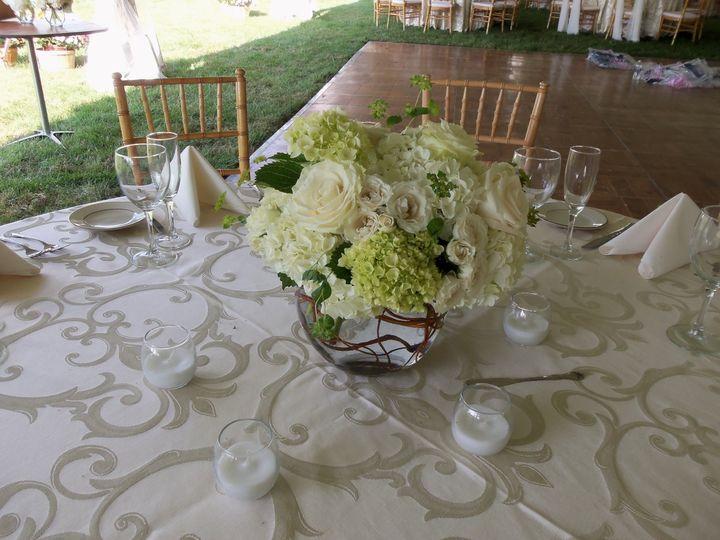 Tmx 1450056350347 104983938339b27bf76a9o New Hope, Pennsylvania wedding florist