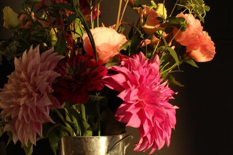 Colorful botanicals