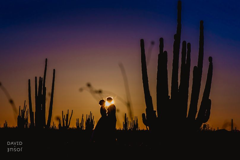 Desert sunset bride and groom