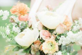 CALA Floral Studio