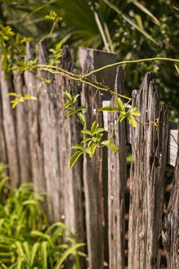 fence becker