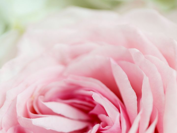 Tmx 1477961594908 D0030 Dallas wedding florist