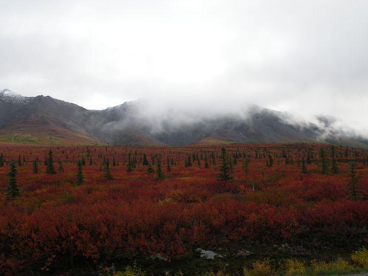 Adventure in Alaska