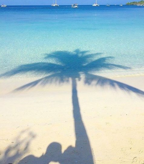 Kiss me under the palm tree