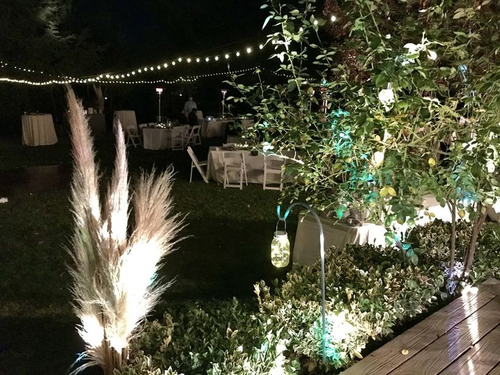 Party lights under the stars