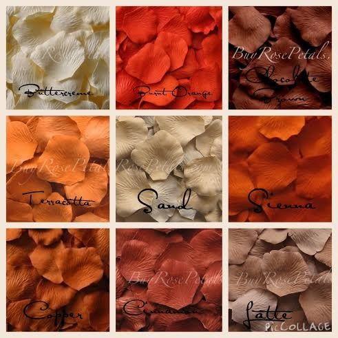 autumn shades rose petals