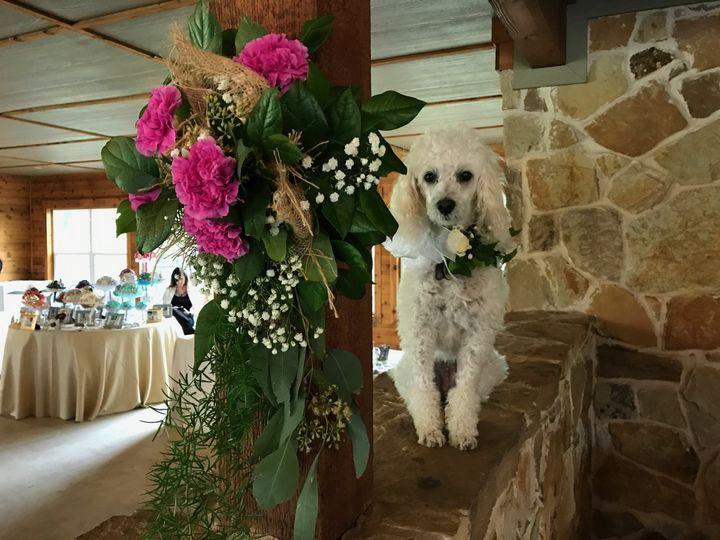 Tmx 1491414399614 Img7762 Wylie wedding florist