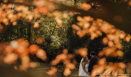 Lightbloom Photography