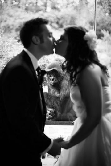 Newlyweds share a kiss