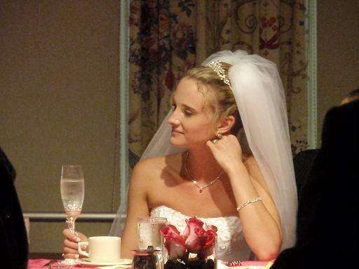 Tmx 1281398077077 TaraShores2 Lafayette, NJ wedding dress