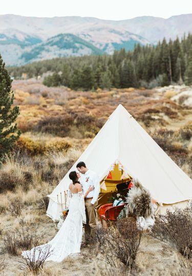 stephanie wood photography colorado cabin alpaca shoot 51 1027511