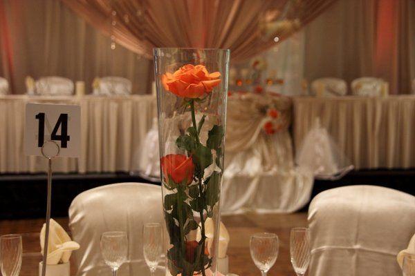 Tmx 1333612461352 IMG5515 Kent wedding eventproduction