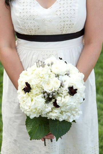 A bridal bouquet of white hydrangeas, spray roses, chocolate cosmos, and silver brunia.