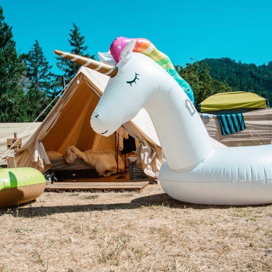 Festival camp