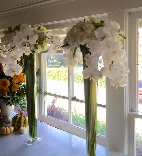 Cascading orchids $235