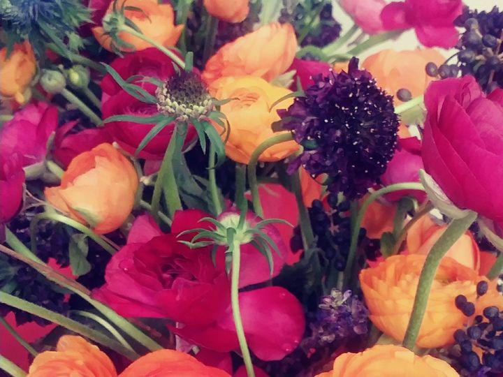 Tmx 20191116 115850 Film1 51 1967611 158887086527367 Rye, NY wedding florist