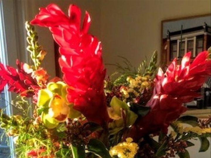 Tmx Img 16931 51 1967611 158887078940265 Rye, NY wedding florist