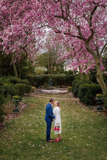 Saucer Magnolias pair well with love in the Bowling Green by RFD Photo